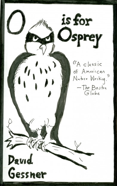 o for osprey029