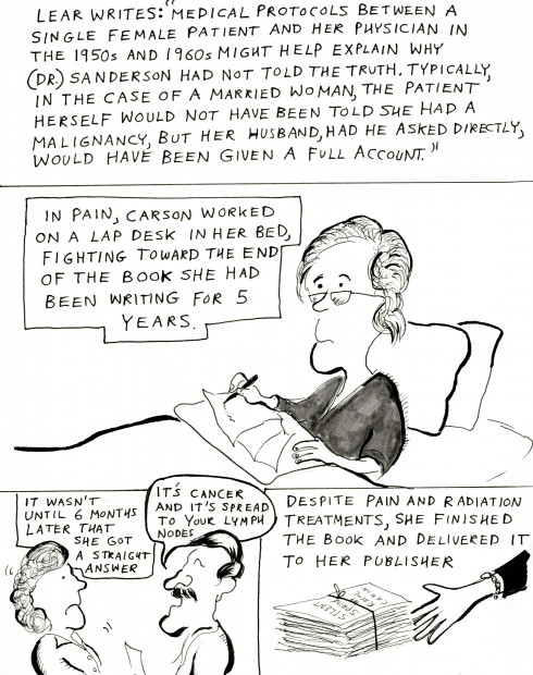rachel s war a cartoon essay on rachel carson s last years acirc bill rachel3