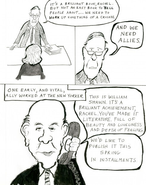 Rachel's War: A Cartoon Essay on Rachel Carson's Last Years ...
