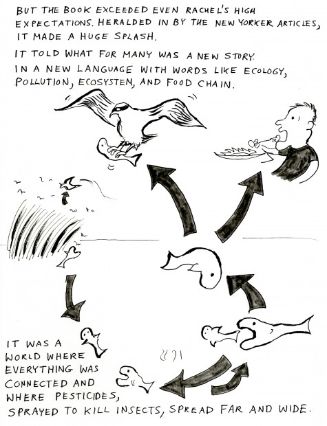 rachel s war a cartoon essay on rachel carson s last years bill  rachel6